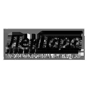 Логотип Лентара