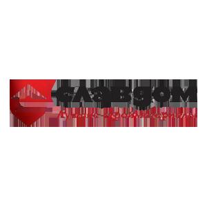 Логотип Славдом