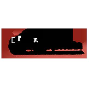 Логотип Спецпластина